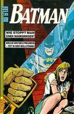 Datei:Batman4 Hethke.jpg